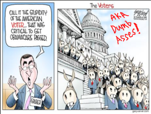 obamacare-gruber - stupid ass voters