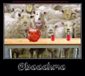obamas koolaid drinking sheeples